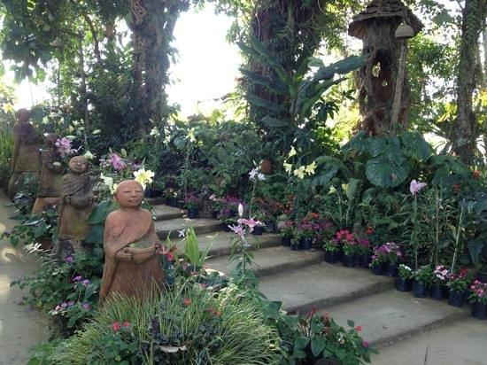 Phu Chaisai Mountain Resort:                   Zen  like atmosphere