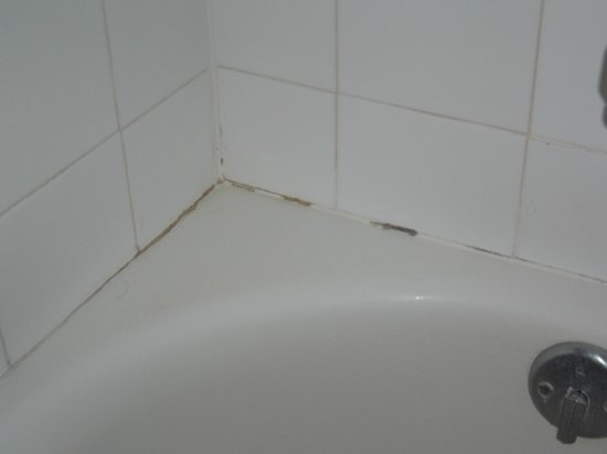Maui Banyan Condos:                   mould by tub