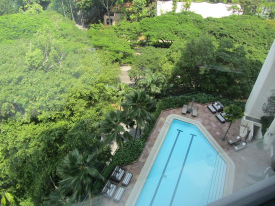 Four Seasons Hotel Singapore: pool