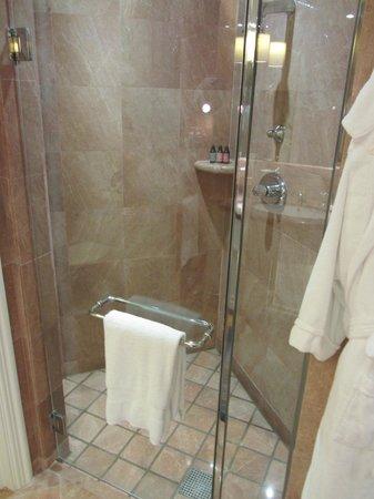 Four Seasons Hotel Singapore: Shower