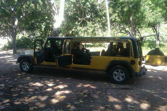 Tropicana Guided Adventure:                   the fun stretch jeep