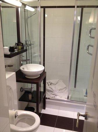 โรงแรมไอเฟลเซน ปารีส:                   nice clean bathroom
