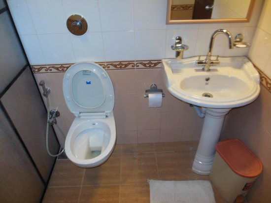 Hotel Fort Queen : Lavatory