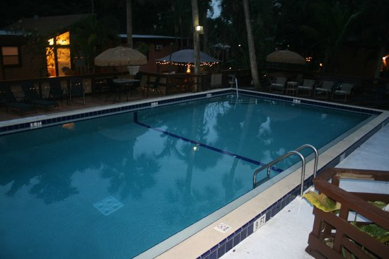 Kona Kai Motel:                   pool