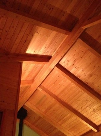 Timber Inn :                   ceiling