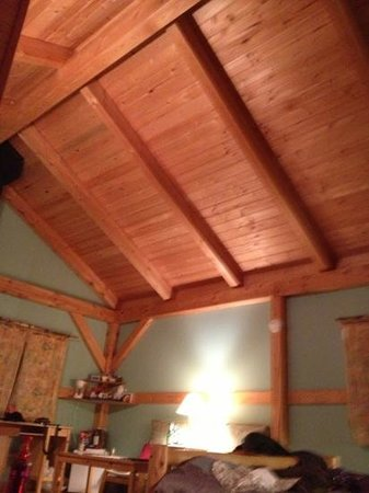 Timber Inn:                   wood ceiling where the ants are coming from
