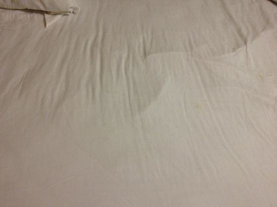 Americana Motel : dirty bed - pillows had hair all over them - and not just one type :(