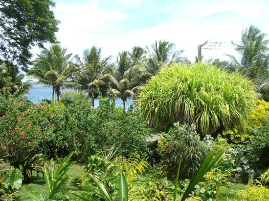 Coral Quays Fish & Dive Resort:                   View from our room #1