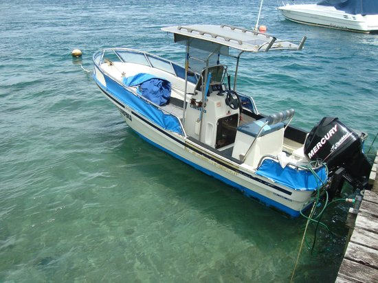 Coral Quays Fish & Dive Resort:                   CQ's dive and fishing boat!