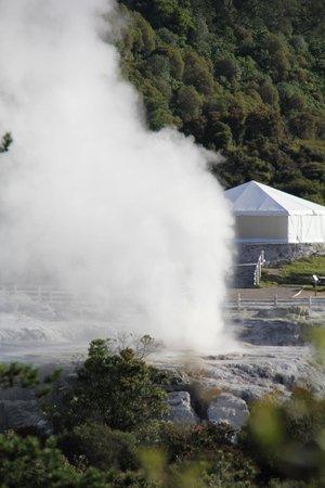 Pohutu Lodge:                   the geyser next door