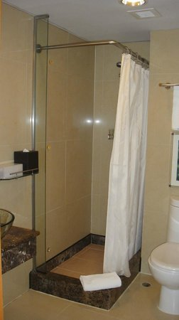 Dorsett Wanchai, Hong Kong:                   Small but clean bathroom