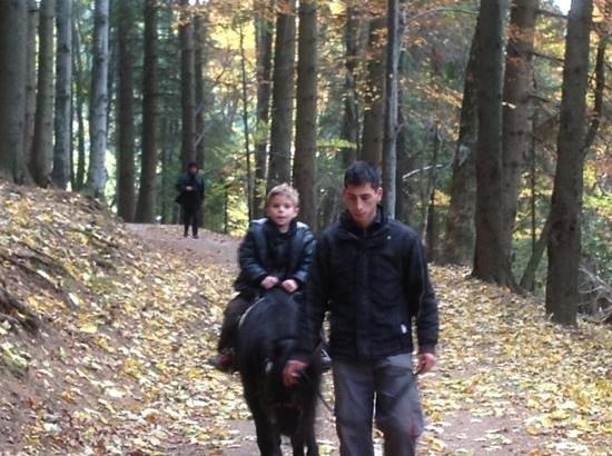 Heraldic Club : paseo en pony en Poiana