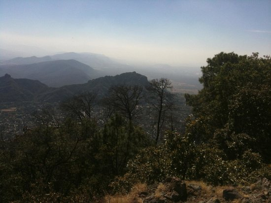 Casa de la Vida:                   View from national forest trail