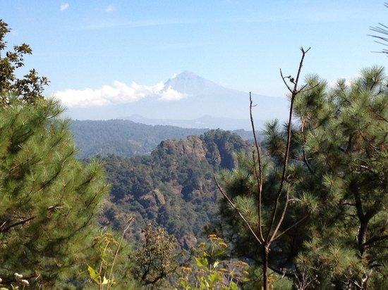 Casa de la Vida:                   Popocatepetl viewed from national forest trail