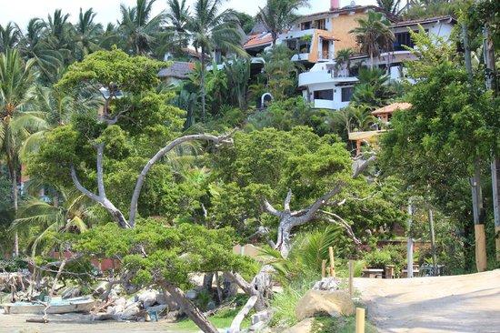 Villa Amor:                   sorroundings...