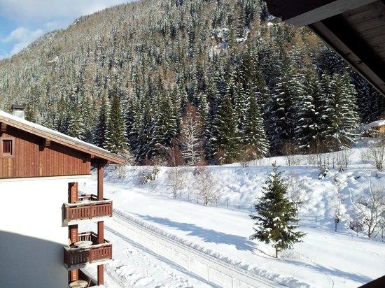Résidence L'Ours Bleu : vue balcon