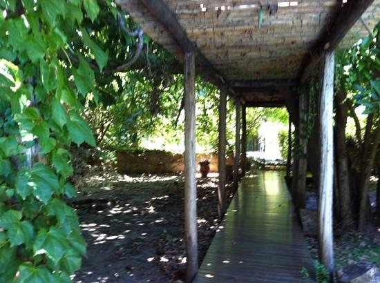 Posada San Isidro: patio exterieur