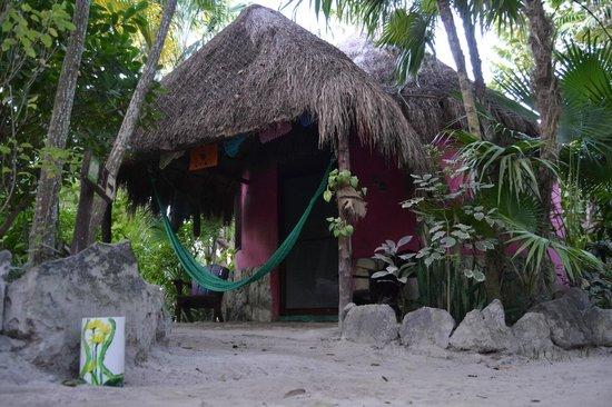 Posada Ecologica Dos Ceibas: cabaña