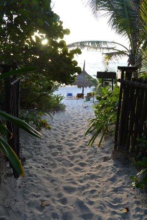 Posada Ecologica Dos Ceibas: de la cabaña a la playa