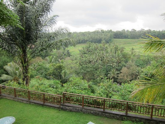 The Samaya Bali Ubud: View from lobby