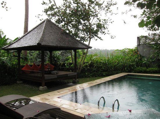 The Samaya Bali Ubud: View of our pool