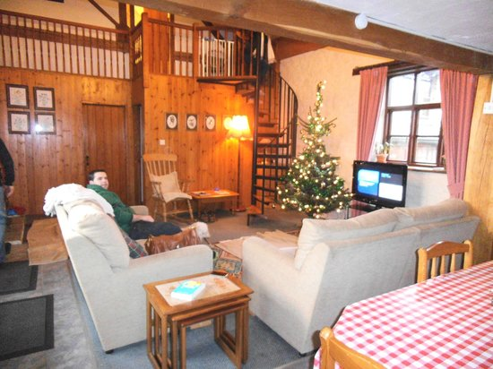 West Hollowcombe Self Catering Cottages:                   Christmas tree