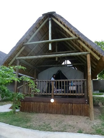 Sabie River Bush Lodge:                   Our room/ tent