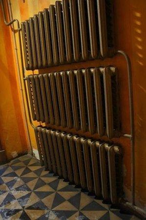 Elevant:                   Extra warmth needed in Tallinn!