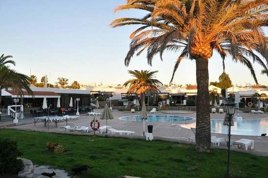 Bungalows Maspalomas Lago: View of the pool & bar from nr 16