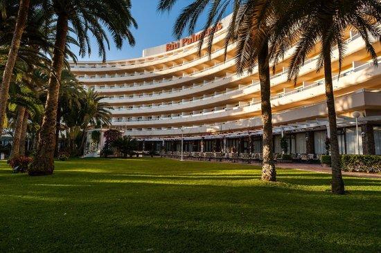 Hotel Riu Palmeras / Bung Riu Palmitos: Il prato sempre curatissimo