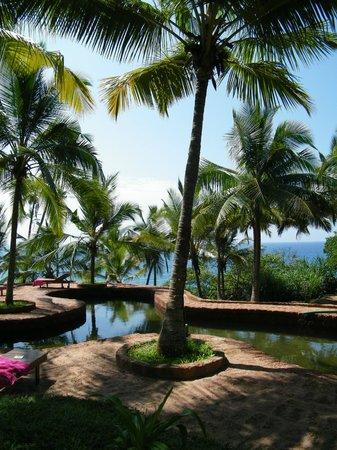 Gartenanlage mit meerwasser pool picture of agastya - Gartenanlage mit pool ...