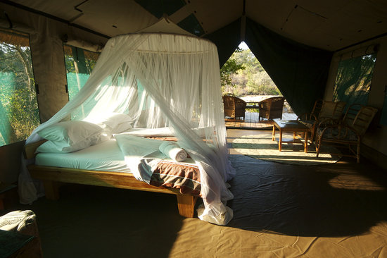 Bua River Lodge: Island room interior
