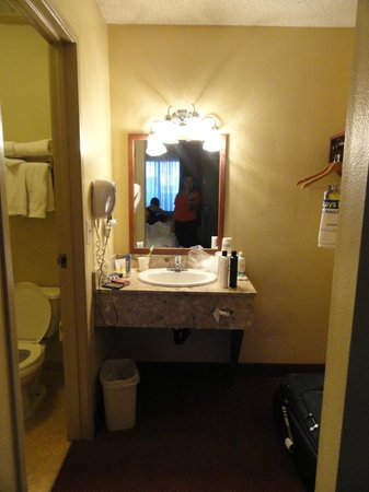 Days Inn Las Vegas At Wild Wild West Gambling Hall: sink