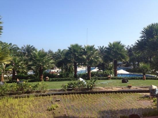 Palm Garden Beach Resort & Spa:                   view from top of terrace