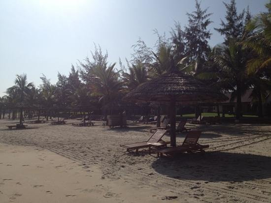 Palm Garden Beach Resort & Spa:                   hotel beach lovely