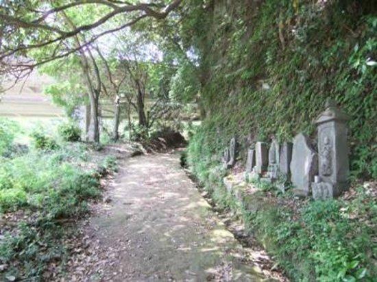 Asahina Excavation: 朝比奈切通し04