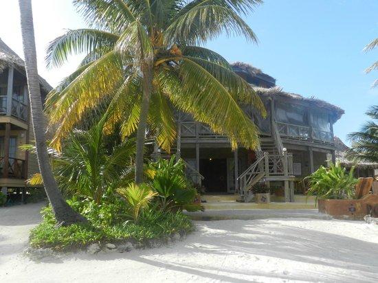 Portofino Beach Resort:                   Main Lobby & Bar