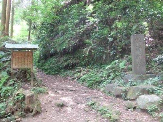 Asahina Excavation: 朝比奈切通し05
