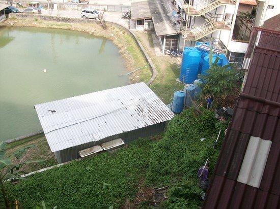 竹子俱樂部精品度假村照片