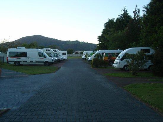 Rotorua Top 10 Holiday Park : Campervan bays