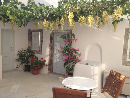 Cori Rigas Suites:                   Courtyard in the morning