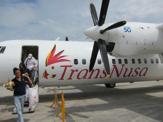 Wakatobi Dive Resort: Charter plane