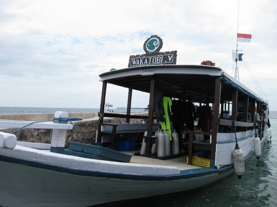 Wakatobi Dive Resort: Dive boat