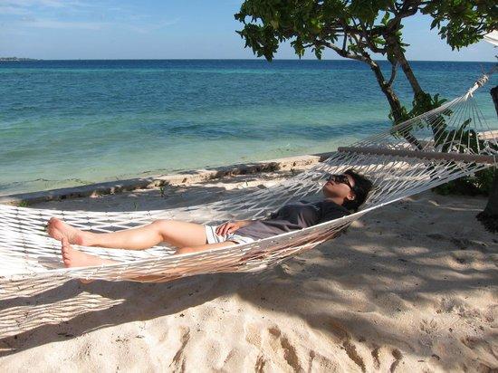 Wakatobi Dive Resort: Hammock!