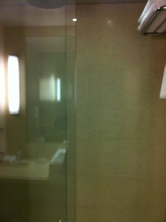 Hilton Sydney: Spacious shower