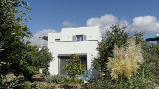 Villa Delona:                   outside the villa