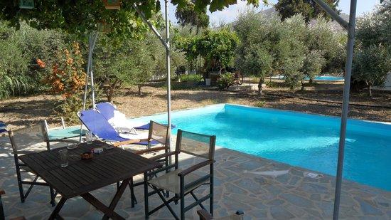 Villa Delona:                   pool terrace