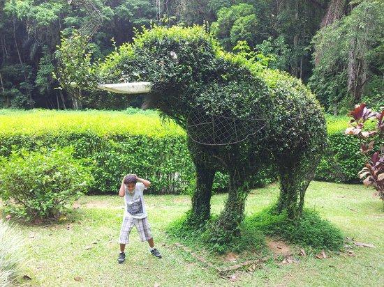 Jaragua Do Sul:                   Paisagem do parque
