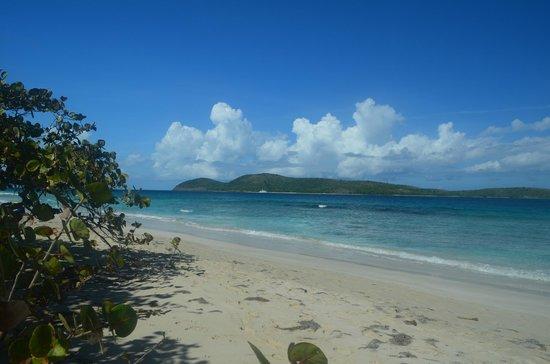 Palmetto Guesthouse:                   Zoni Beach, Culebra