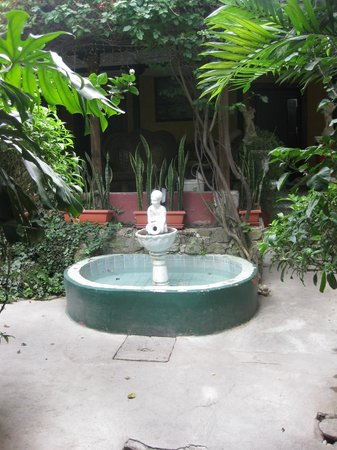 Hotel Casa Antigua:                   Courtyard garden